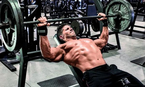 Жим лежа мышцы