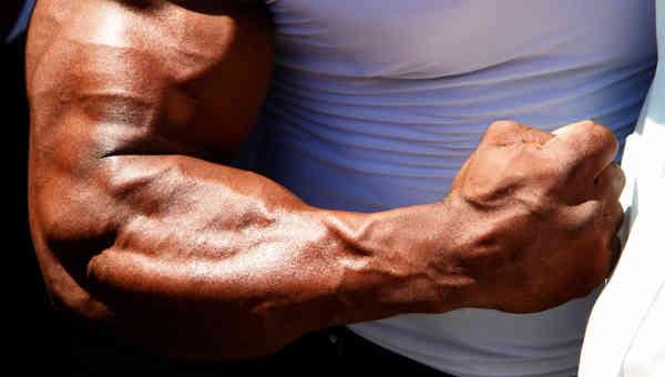 Мощная мускулатура рук