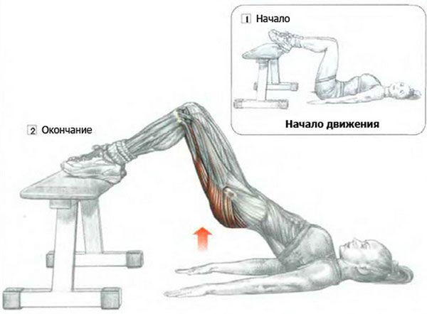 Мостик ноги на скамье