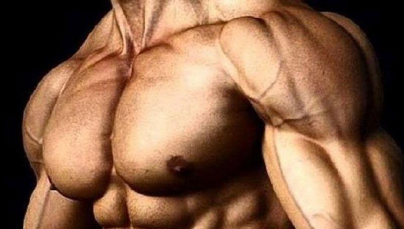 Как качать верхнюю часть грудных мышц – упражнения для мощной груди