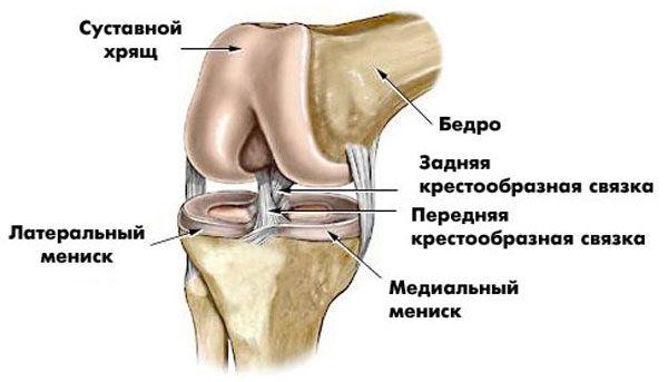 От прыжков болит колено после удара в локтевой сустав может быть перелом