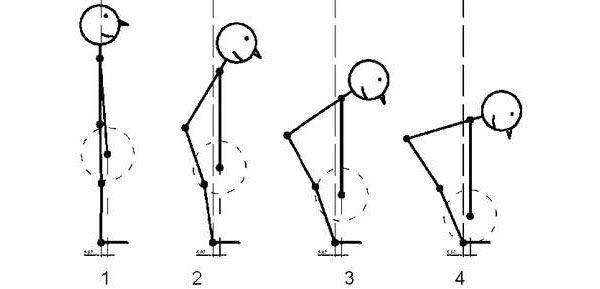 Схематичное изображение движения штанги