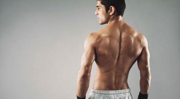 Мужская спина
