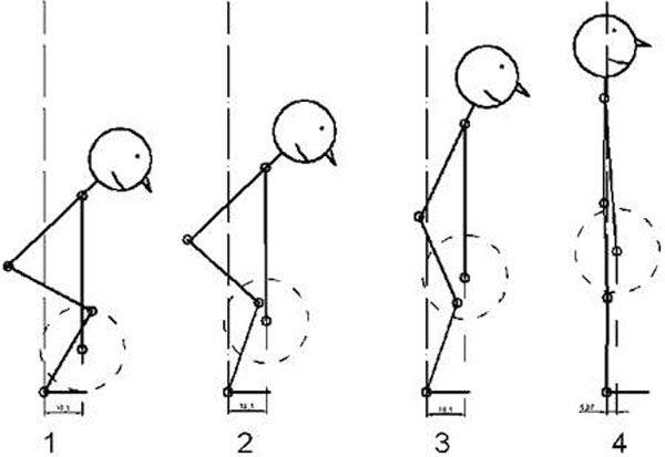 Положение суставов при выполнении тяги