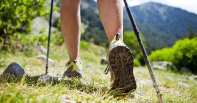 Как правильно выбрать палки для скандинавской ходьбы – по росту и другим параметрам