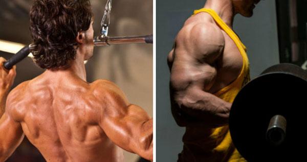 Упражнения для спины и бицепсов