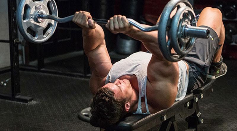Лучшие упражнения на трицепс – техника и принципы выполнения